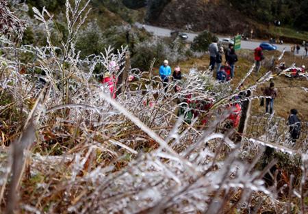 Băng tuyết phủ trắng tại Cao Bằng, Lai Châu, Lào Cai