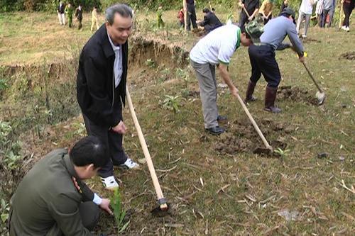 Các địa phương Phát động Tết trồng cây