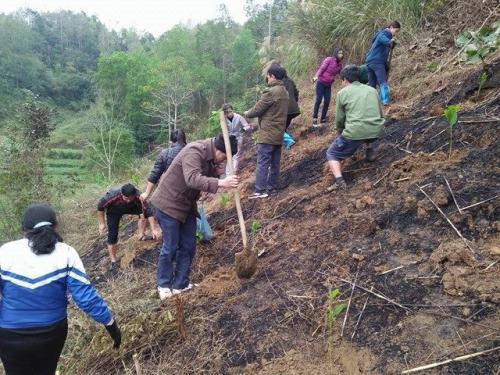 Công đoàn Trung tâm Giáo dục Lao động xã hội hưởng ứng tham gia Tết trồng cây